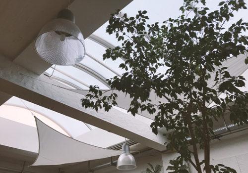 Galerie Köln innenansicht Standort Premium Modern Art